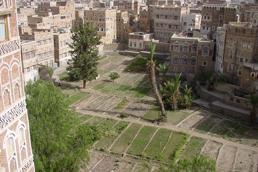 Miqshamah in Sana'a