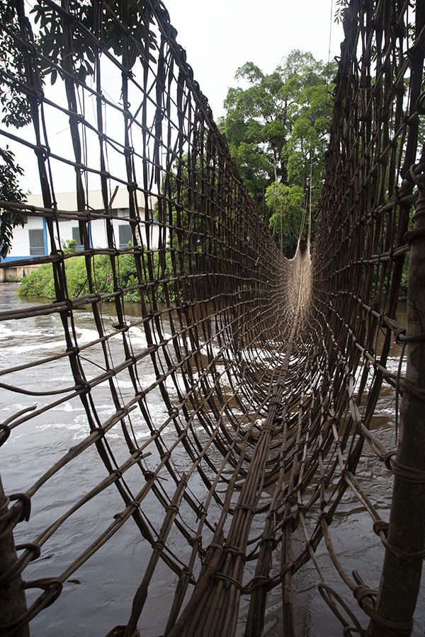 Lianen brug bij de Poubara waterval