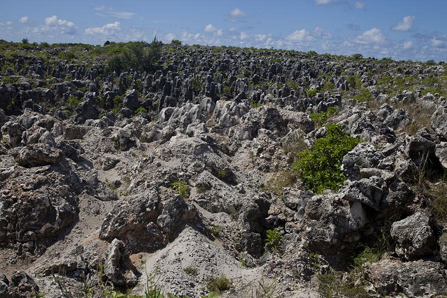 Het desolate landschap van Nauru waar vrijwel alle vegetatie is verdwenen