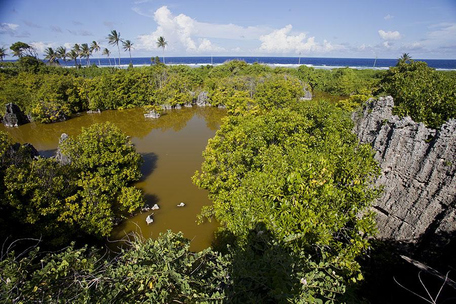 Uitzicht over meertje in het noorden van Nauru