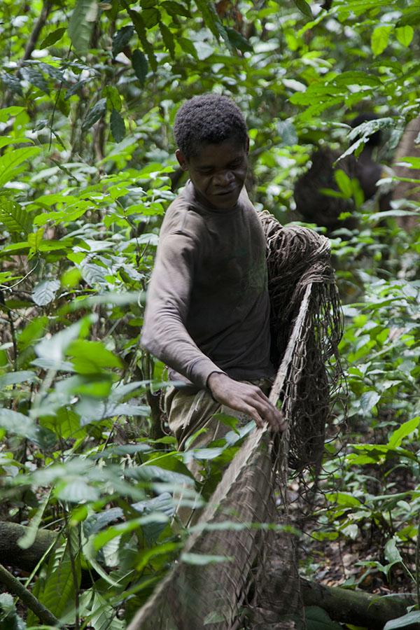 Pygmee vrouw aan het netjagen