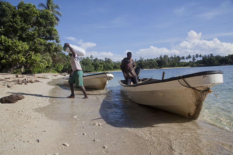 De betelnoot bootjes op het strand